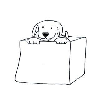 Wag the dog essay cambridge